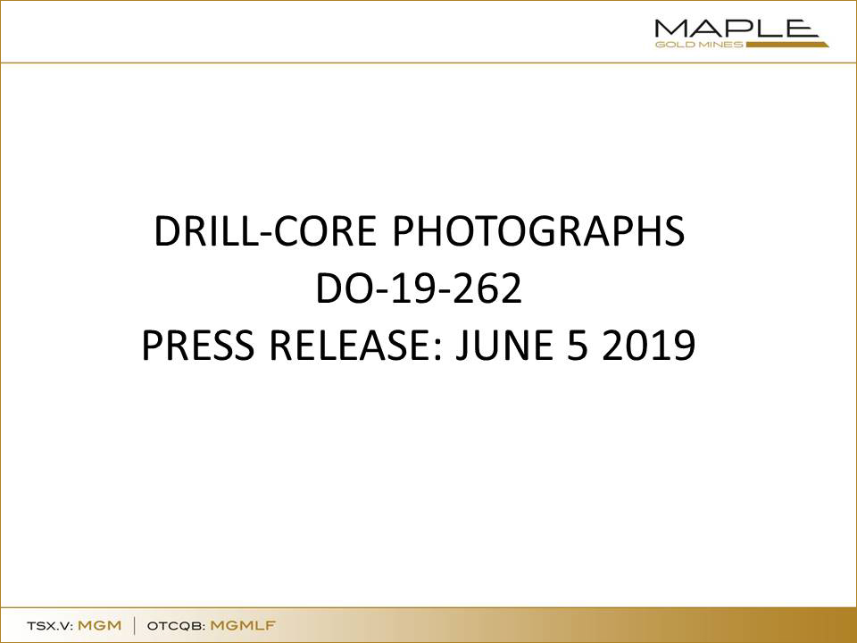 Drill Core Photographs DO 19 262 June 5 2019